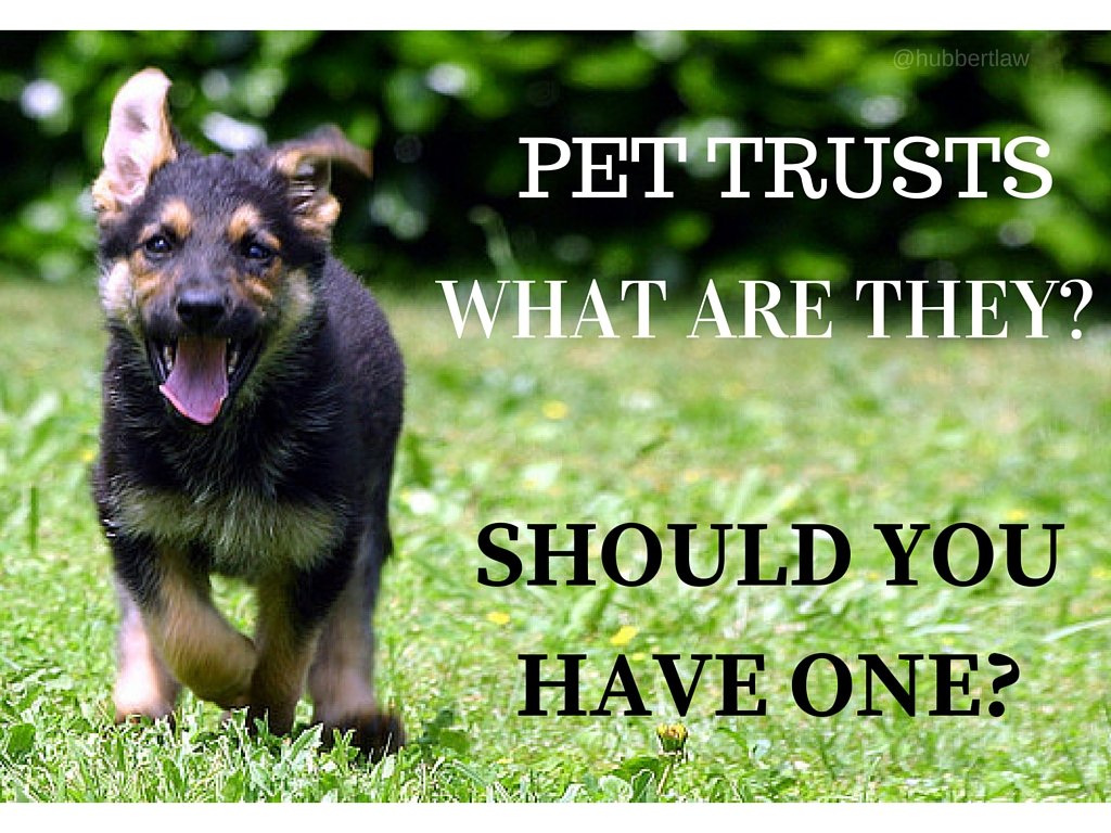 PET TRUSTS - What are they? And should You Have One for Your Pet in the event of an emergency?